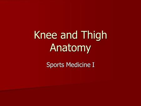 Knee and Thigh Anatomy Sports Medicine I. Knee Anatomy Largest joint in body Largest joint in body Condyles articulate on femur and tibia Condyles articulate.