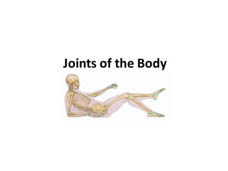 Joints of the Body. Terminology: Articulations – points of contact of joints between 2 connected bones Tendon – attach muscle to bone Ligament – attach.