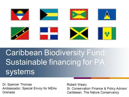 Caribbean Biodiversity Fund: Sustainable financing for PA systems Robert Weary Sr. Conservation Finance & Policy Advisor Caribbean, The Nature Conservancy.
