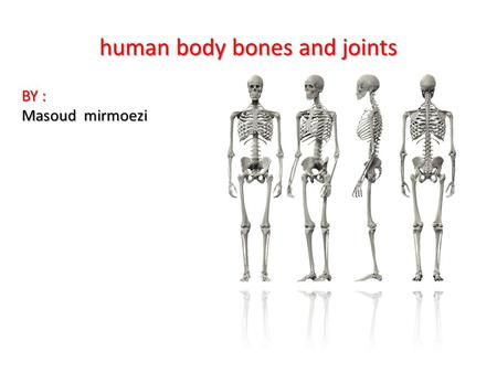 Human body bones and joints BY : Masoud mirmoezi.