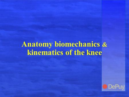 Anatomy biomechanics & kinematics of the knee. Knee Anatomy.