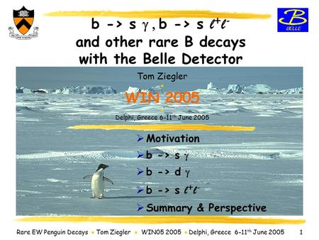 Rare EW Penguin Decays  Tom Ziegler  WIN05 2005  Delphi, Greece 6-11 th June 2005 1 b -> s  b -> s l + l - and other rare B decays with the Belle.