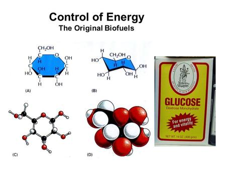 Control of Energy The Original Biofuels. Importance of Glucose Regulation Too little – Brain problems Too much –Osmotic water loss (cellular and systemic)
