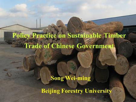 Policy Practice on Sustainable Timber Trade of Chinese Government Song Wei-ming Beijing Forestry University.