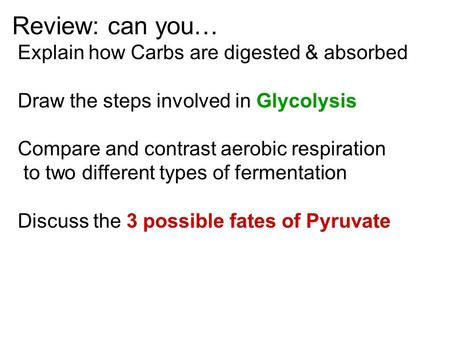 Review: can you… Explain how Carbs are digested & absorbed Draw the steps involved in Glycolysis Compare and contrast aerobic respiration to two different.