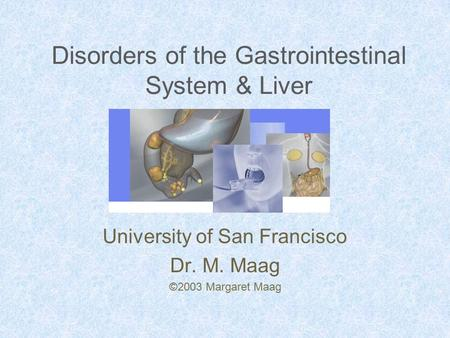Disorders of the Gastrointestinal System & Liver University of San Francisco Dr. M. Maag ©2003 Margaret Maag.