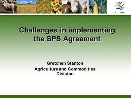 Challenges in implementing the SPS Agreement Gretchen Stanton Agriculture and Commodities Division.