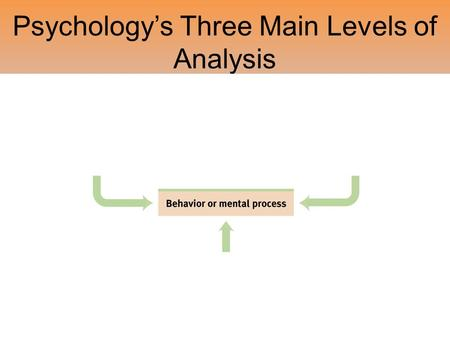 Psychology's Three Main Levels of Analysis