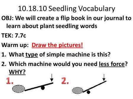 10.18.10 Seedling Vocabulary OBJ: We will create a flip book in our journal to learn about plant seedling words TEK: 7.7c Warm up: Draw the pictures!