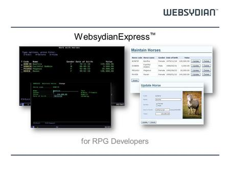 WebsydianExpress ™ for RPG Developers. Presenter Niels P. Sorensen Product Manager, Websydian Lead Architect Developer for many years in languages like.