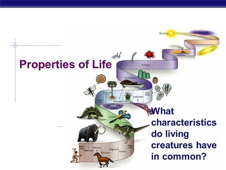 What characteristics do living creatures have in common?