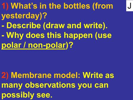 J 1) What's in the bottles (from yesterday)? - Describe (draw and write). - Why does this happen (use polar / non-polar)? 2) Membrane model: Write as many.