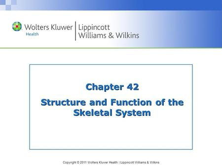 Copyright © 2011 Wolters Kluwer Health | Lippincott Williams & Wilkins Chapter 42 Structure and Function of the Skeletal System.
