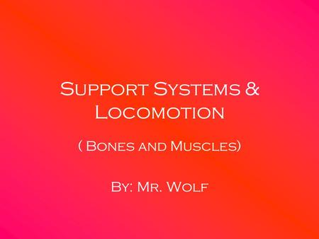 Support Systems & Locomotion
