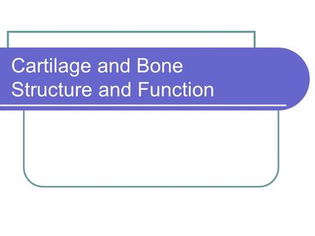 Cartilage and Bone Structure and Function. Bones.