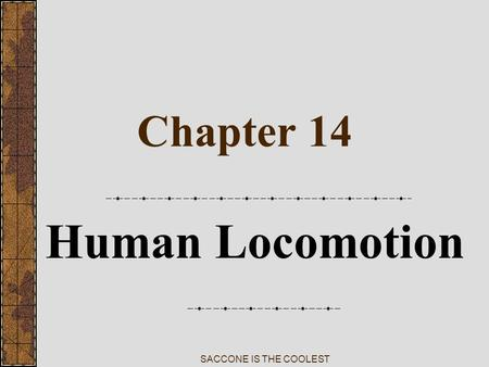 SACCONE IS THE COOLEST Chapter 14 Human Locomotion.