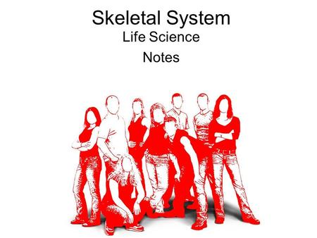 Skeletal System Life Science Notes. Skeletal System Life Science Objectives 2/25/11 1.Complete 'Bag of Bones' Activity and turn in. 2.Begin notes on the.