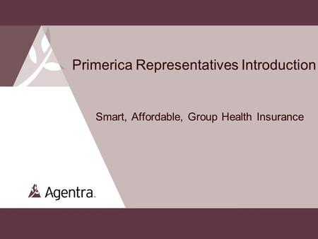 Primerica Representatives Introduction Smart, Affordable, Group Health Insurance 1.