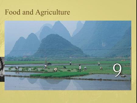 Food and Agriculture. Land Use 11% of the earth's land is used in agricultural production –Less land cultivated in NA now than 100 years ago.