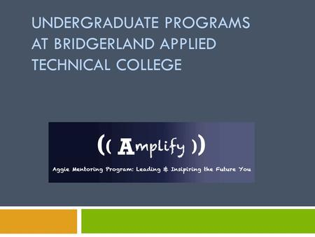 UNDERGRADUATE PROGRAMS AT BRIDGERLAND APPLIED TECHNICAL COLLEGE.