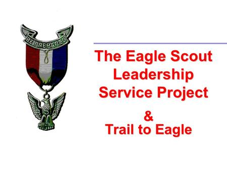 The Eagle Scout Leadership Service Project