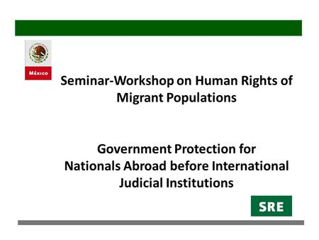 Seminar-Workshop on Human Rights of Migrant Populations Government Protection for Nationals Abroad before International Judicial Institutions.