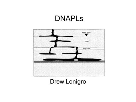 DNAPLs Drew Lonigro. Dense Nonaqueous-Phase Liquids Densities greater than water or specific gravity greater than 1. Typically chlorinated hydrocarbons,
