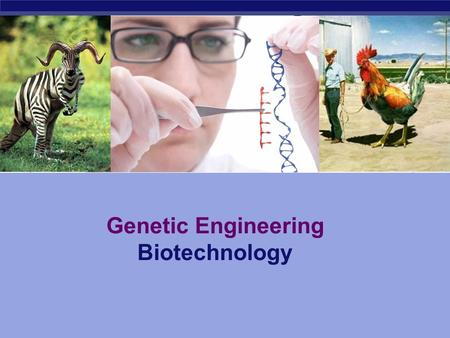 Genetic Engineering Biotechnology The manipulation of a trait in an organism to create a desired change What is Genetic Engineering?