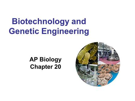 ap biology genetic engineering essay Ap® biology 2014 scoring guidelines  question 1   the team claims that this will eliminate genetic variation in the engineered flies a second.