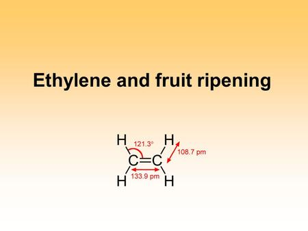 Ethylene and fruit ripening. Ripening Combination of the processes (i.e., not a single process) that occur from the latter stages of growth and development.