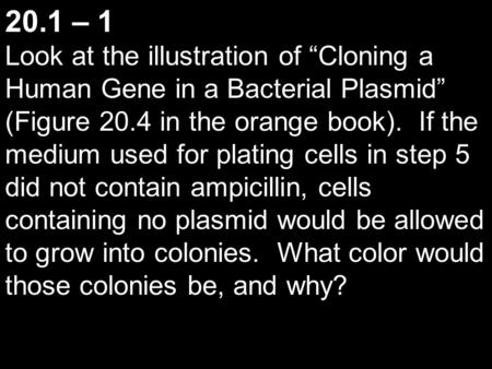 "20.1 – 1 Look at the illustration of ""Cloning a Human Gene in a Bacterial Plasmid"" (Figure 20.4 in the orange book). If the medium used for plating cells."