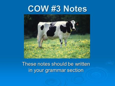 COW #3 Notes These notes should be written in your grammar section.