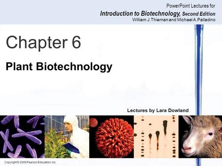 Copyright © 2009 Pearson Education, Inc. PowerPoint Lectures for Introduction to Biotechnology, Second Edition William J.Thieman and Michael A.Palladino.