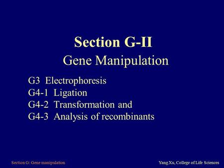 Section G: Gene manipulationYang Xu, College of Life Sciences Section G-II Gene Manipulation G3 Electrophoresis G4-1 Ligation G4-2 Transformation and G4-3.