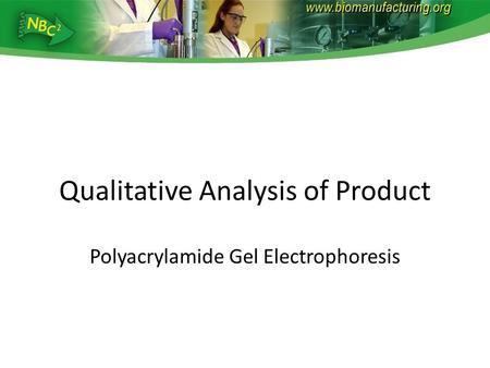 Qualitative Analysis of Product Polyacrylamide Gel Electrophoresis.