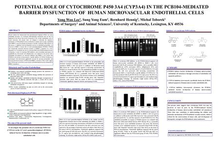POTENTIAL ROLE OF CYTOCHROME P450 3A4 (CYP3A4) IN THE PCB104-MEDIATED BARRIER DYSFUNCTION OF HUMAN MICROVASCULAR ENDOTHELIAL CELLS Yong Woo Lee 1, Sung.