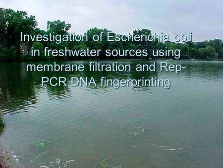 Investigation of Escherichia coli in freshwater sources using membrane filtration and Rep- PCR DNA fingerprinting.