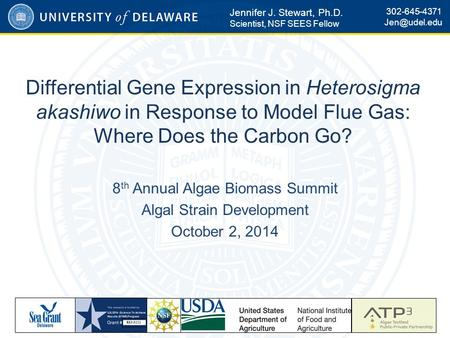 Differential Gene Expression in Heterosigma akashiwo in Response to Model Flue Gas: Where Does the Carbon Go? 8 th Annual Algae Biomass Summit Algal Strain.
