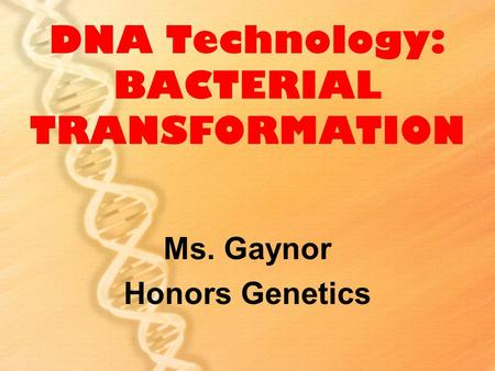 DNA Technology: BACTERIAL TRANSFORMATION Ms. Gaynor Honors Genetics.