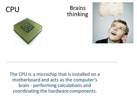 CPU The CPU is a microchip that is installed on a motherboard and acts as the computer's brain - performing calculations and coordinating the hardware.