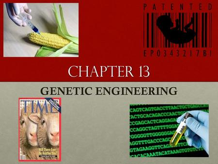 Chapter 13 GENETIC ENGINEERING.