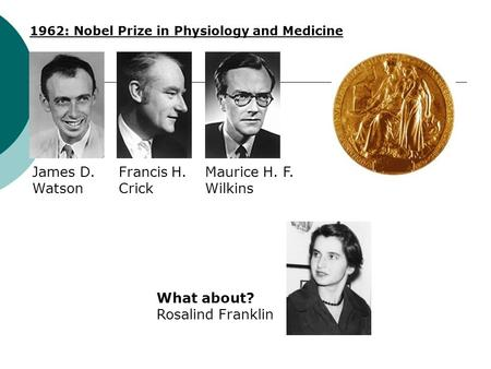 1962: Nobel Prize in Physiology and Medicine James D. Watson Francis H. Crick Maurice H. F. Wilkins What about? Rosalind Franklin.