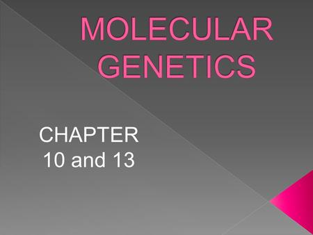 MOLECULAR GENETICS CHAPTER 10 and 13.