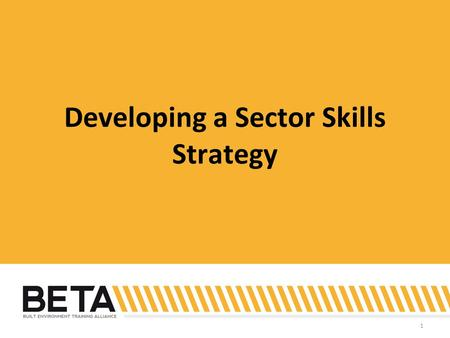 1 Developing a Sector Skills Strategy. 2 Identifying issues.