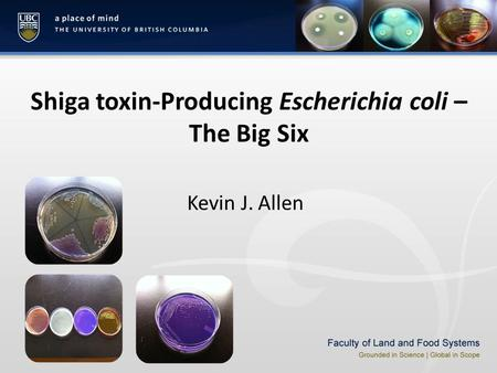 Shiga toxin-Producing Escherichia coli – The Big Six