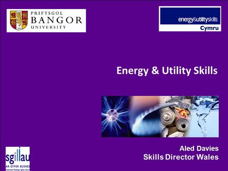 Energy & Utility Skills Aled Davies Skills Director Wales.