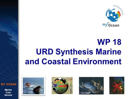 Marine Core Service MY OCEAN WP 18 URD Synthesis Marine and Coastal Environment.