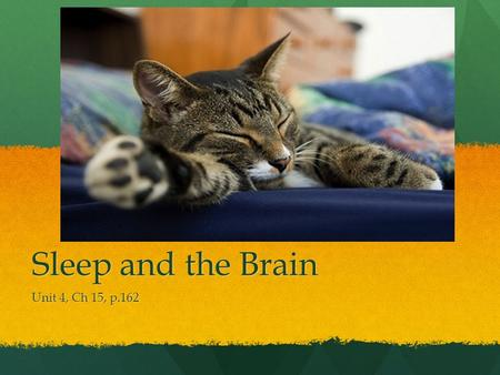 Sleep and the Brain Unit 4, Ch 15, p.162. Pre-reading Questions.