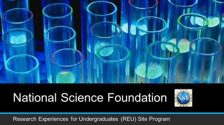 National Science Foundation Research Experiences for Undergraduates (REU) Site Program.