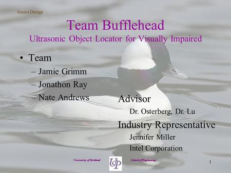 Senior Design 1 Team Bufflehead Ultrasonic Object Locator for Visually Impaired Team –Jamie Grimm –Jonathon Ray –Nate Andrews University of Portland School.